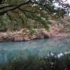 秋深まる長池公園